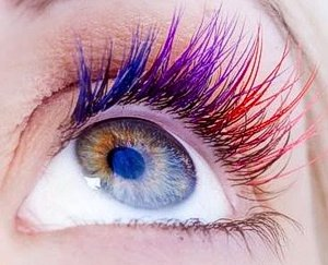 eyelash-extensions-purple_eyes1
