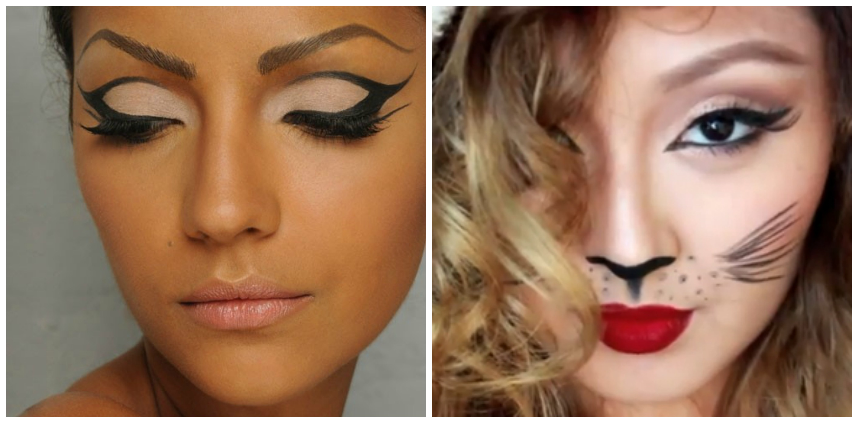 100+ [ Halloween Makeup Ideas For Cat Faces ] | Modernizing ...